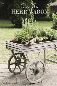 Create an Herb Garden in an old wagon ... outdoor decor on wheels!