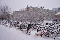 Bicycles lined up outside Stockholm station by Carol S Mansfield, via Flickr