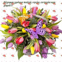 giortazo.gr: Ευχές Ονομαστικής Εορτής και Γενεθλίων Name Day, Happy Birthday, Messages, Simple, Flowers, Plants, Life, Happy Brithday, Saint Name Day