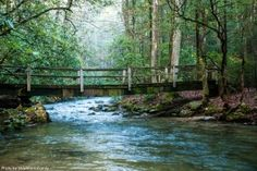 Smithgall Woods State Park in Helen, Georgia