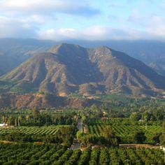 Ojai California | www.AfterOrangeCounty.com
