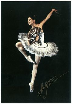 Altynai Asylmuratova in 'Don Quixote' with the Kirov Ballet    St Petersburg has been the cradle of ballet genius for a century and half, but for sheer radiance, few of its stars have matched Asylmuratova. Born in Kazakhstan, she joined the Kirov Ballet in 1978, aged 17, and became a noted exemplar of the company's luminous, soft-backed style. As Odette in Swan Lake or Nikiya in La Bayadère, her pearlescent beauty was matched by a bewitching expressiveness. She used her arms, in particular, ...