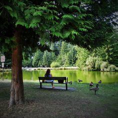 Amanda Fernandez Photography ©  #serene #park #Burnabycentralparl #pond