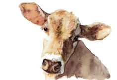 I love this watercolor cow :)
