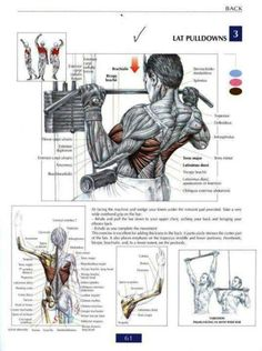 Lat pulldowns - Back workout ~ Re-Pinned by Crossed Irons Fitness Click for an AMAZING back workout!                                                                                                                                                     More