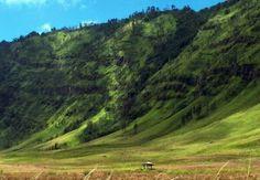 Gunung Bromo, Pasuruan Seru abiss...seperti di lukisan. but its fact