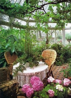 Garden Room: Image By Brian Ferry The Nyt Book Of Interior Design And Decoration 1976 Greenhouse With Wicker Chairs Spring I. Cheap Greenhouse, Greenhouse Plans, Greenhouse Gardening, Magic Garden, Dream Garden, Indoor Garden, Outdoor Gardens, Gazebos, Decoration Plante