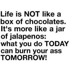 Google Image Result for http://myfunnyworld.net/funny-pictures/quotes/life-is-not-like-a-box-of-chocolates.jpg