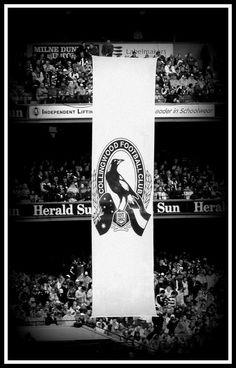 Australian Rules Football ( AFL ) Collingwood Magpies