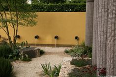 The Daily Telegraph Garden at Chelsea 2011