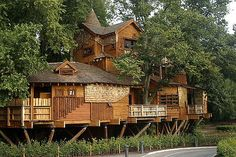 Tree House | The largest tree house in Europe at Alnwick, No… | Flickr