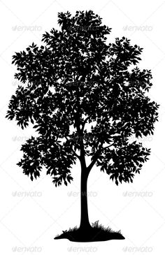 Maple Tree and Grass, Silhouette  #GraphicRiver         Maple tree with leaves and grass, black silhouette on white background.   Vector EPS 8 plus AI CS 5 plus high-quality Jpeg. Editable vector file, containing only vector shapes. No gradients. No transparencies.     Created: 27July13 GraphicsFilesIncluded: JPGImage #VectorEPS #AIIllustrator Layered: No MinimumAdobeCSVersion: CS5 Tags: black #branch #contour #cutout #drawing #fashion #figure #flora #foliage #forest #graphic #grass…
