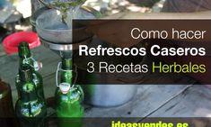 15 Ideas Revolucionarias para hacer Invernaderos por nada o muy poco dinero - Ideas Verdes Ideas Geniales, Glass Vase, Soap, Bottle, Diy, Ideas Originales, Cactus, Decoration, Gardens