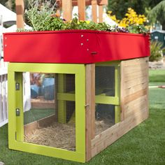 Colorful backyard chicken coop with a roof garden, so cool! I would love to have this whenever we get a house. Fresh eggs, a mini-garden full of veggies and herbs... sounds awesome!