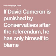 If David Cameron is punished by Conservatives after the referendum, he has only himself to blame David Cameron, Blame
