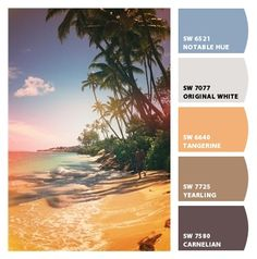 Colours on pinterest color palettes ocean colors and for Tropical paint schemes