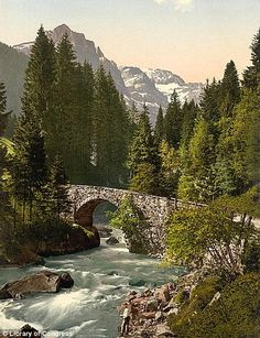Early 1900s - The Moulins Bridge stretches across the foaming river surrounded by tall pine trees on the road to Champéry, Valais, Switzerland