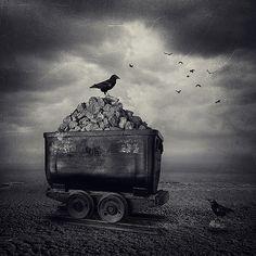 Untitled | Flickr - Photo Sharing!