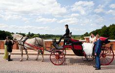 Hochzeitskutsche - Hochzeits-Pferdewagen Foto: Arita Cimermane Tandem, Limousine, Horse Drawn Wagon, Antique Cars, Ideas, Tandem Bikes