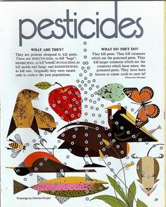 In the 1971 May/June issue of Ranger Rick (children's magazine, published by the National Wildlife Federation), the hazards of pesticides were clearly explained in an article by John Frederic, with illustrations by Charles (Charley) Harper.