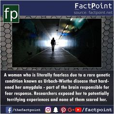 641 Likes, 2 Comments - Fact Point (@factpoint) on Instagram