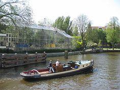 Amsterdam > Jodenbuurt et Plantage L'ancien quartier juif (Jodenbuurt) s'est développé autour de l'actuel hôtel de ville (Stadhuis), puis vers l'est sous la pression démographique. Le quartier du Plantage s'étend au nord du Jodenbuurt jusqu'aux anciens entrepôts du port. Il est limité à l'est par l'Oosterpark. Il doit son nom d'origine française à la création de nombreux espaces verts au XVIIe siècle. On y trouve aujourd'hui le jardin botanique et l'Osterpark.