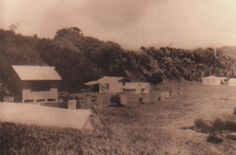 Tents and The Cabin (probably 1930s) Rosedale NSW. Photo Deirdre Prussak Make Do And Mend, Great Depression, Tents, 1930s, Europe, Canada, Australia, Cabin, In This Moment