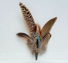 large pheasant and jay feather hatpin/ brooch Jay Feather, Feather Bouquet, Large Feathers, Pheasant Feathers, Shotgun Cartridges, Men Editorial, Wedding Stuff, Wedding Ideas, Feather Crafts