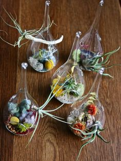 OOAK teardrop glass terrarium display with air plant and preserved materials by Flower Power Nation. $38.00, via Etsy.