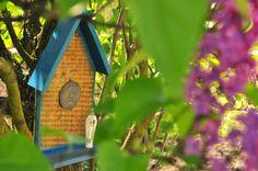 Kolonia NieKarna ;): Idą ogrodnicy ...