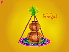 happy pongal Pictures for facebook whatsap