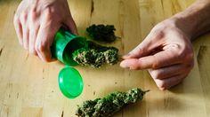 Don't Be Jealous of My Marijuana Prescription - Tonic
