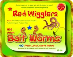 40 Red Wigglers Awesome Worms For Composting Fishing Bait