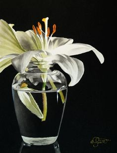 White Lily in Vase, New Watercolor and Video on the Forum, painting by artist Jacqueline Gnott