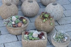 Winterarbeiten sind fertig - fleißig im Beton gewühlt - Seite 13 - Deko & Kreatives - Mein schöner Garten online