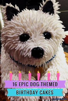 Your dog is your favorite thing in the whole world. So why not get a cake in his…