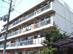 堺市堺区 賃貸マンション メゾン堺