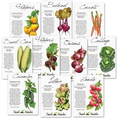 Heirloom Vegetable Seed Assortment (10 Individual Seed Packets)