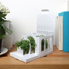 fold-out-miniature-garden-growing-gift-by-post.jpg