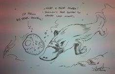Duckbills and amoebas
