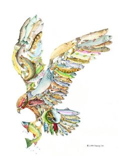 """Osprey, Packing a Lunch. The """"You Are What You Eat"""" series involves extensive research and creative planning. The finished piece has it's own evolution and a history in my mind's eye. World Map Travel, Osprey Packs, Bird Aviary, World Map Decal, Amazon Art, Bird Watching, Urban Art, Art World, Art Sketches"""