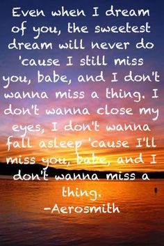 I don't wanna miss a thing :3