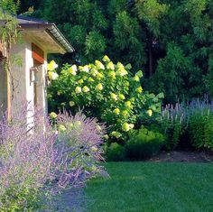 SHELTER: #ourloveforautumn and gorgeous gardens!
