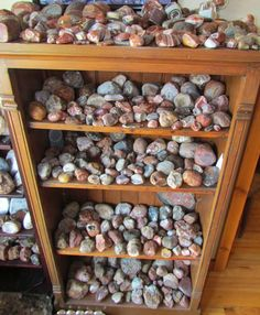The Agatelady: Adventures and Events: Incredible Rock Collection Minerals And Gemstones, Crystals Minerals, Rocks And Minerals, Stones And Crystals, Rock And Pebbles, Rocks And Gems, Rock Identification, Rock Tumbling, Lake Superior Agates