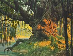 """Old Man Willow"", Lord of the Rings painting by Greg  Tim Hildebrandt"