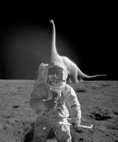 It Came from Outer Space! Bizarre Photo Manipulations