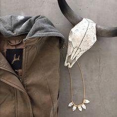 BB Dakota Leather Jacket Never worn BB Dakota leather jacket. Removable grey hood. NWT, no trades. BB Dakota Jackets & Coats