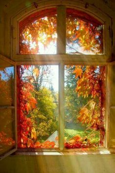 Ok...THAT'S pretty! Warm Colors, Pretty Pictures, Cool Photos, Amazing Photos, Beautiful World, Beautiful Homes, Beautiful Artwork, Beautiful Houses Interior, Autumn Scenery
