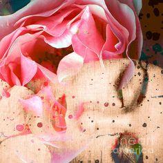 Fragrance Of A Rose Alaya Gadeh