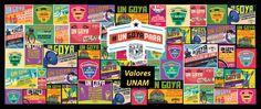 REFUERZA LA UNAM LOS VALORES UNIVERSITARIOS EN SU COMUNIDAD